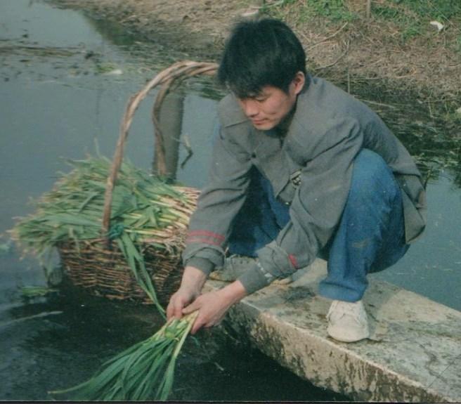 rural Fengyang1