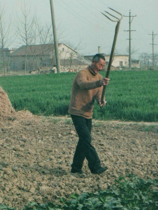 rural Fengyang2